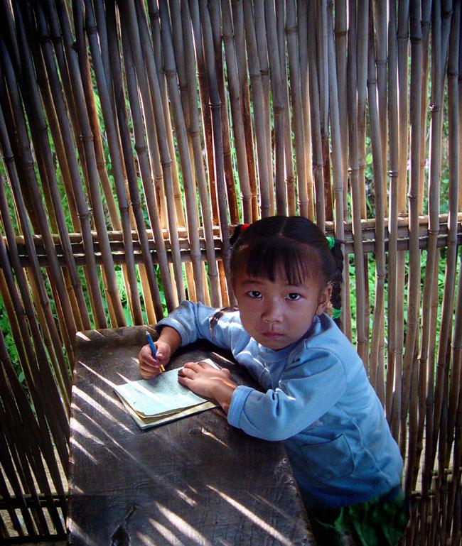 篱笆墙内的孩子